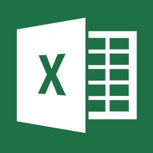 Excel 2013 icon