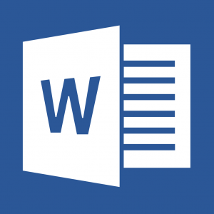 Word 2013 icon